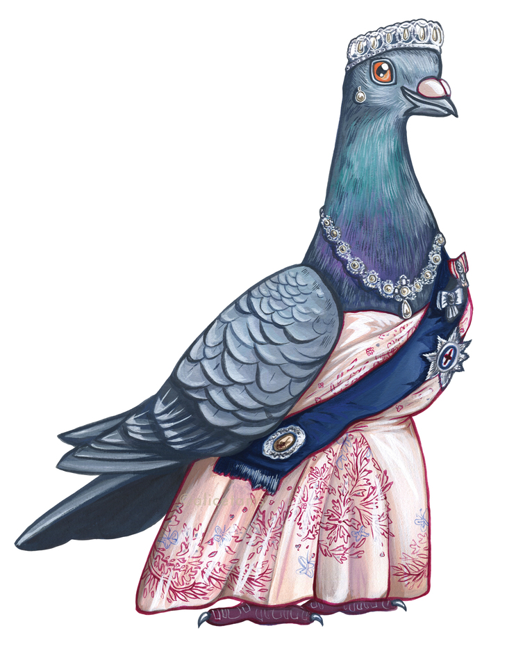 prinses duif